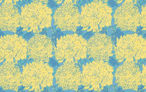 Bloomers 0Pule 1.14m*13.7m - 41.00 lei